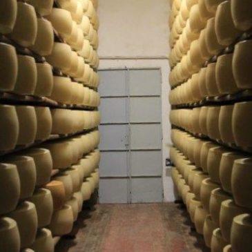 Parmigiano Reggiano Maturatio Room www.compassandfork.com