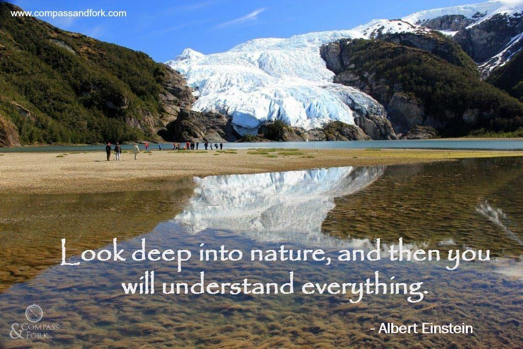 Compass & Fork Inspirational Quote Albert Einstein compassandfork.com