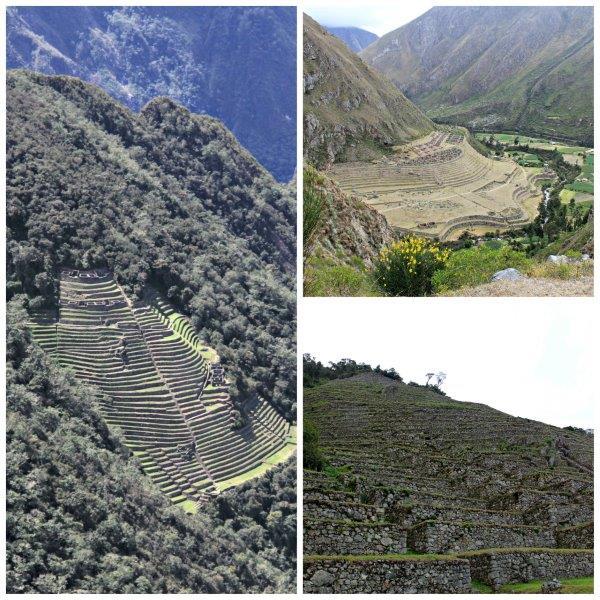 Incan Fields - the best Peruvian Scalloped Potatoes Recipe ever compassandfork.com