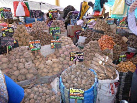 Peruvian potatotoes - the best peruvian scalloped potatoes recipe ever compassandfork.com