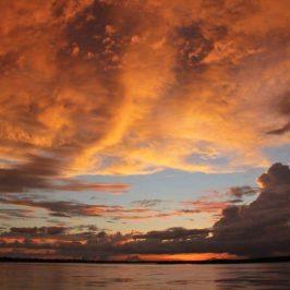 The Best Way to Explore the Amazing Amazon Rainforest